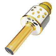 میکروفون اسپیکر دار بلوتوثی 858